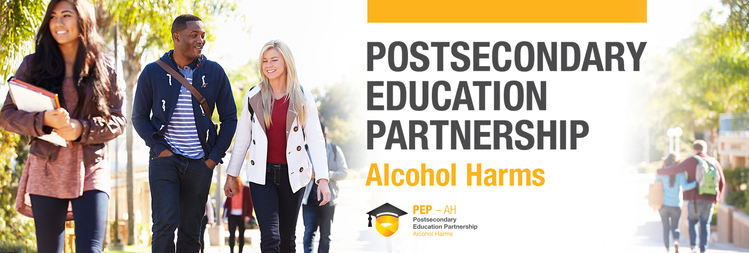 Postsecondary Education Partnership — Alcohol Harms