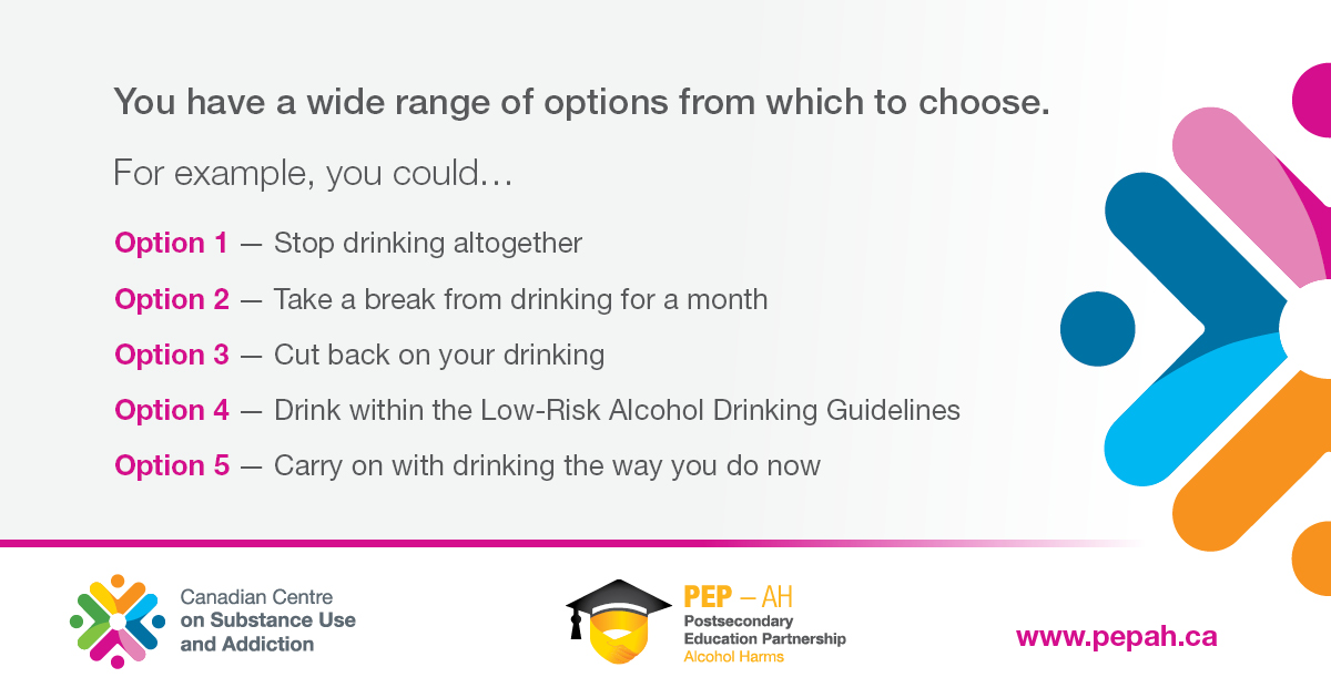 Choose healthier drinking habits: Stop drinking; take a break from drinking for a month; cut back on drinking; drink within the Low-Risk Drinking Guidelines; carry on drinking the way you do now.